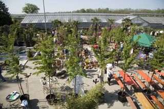 Eine Fülle mediterraner Pflanzen wird auf dem Lahrer Sonnenplatz präsentiert.