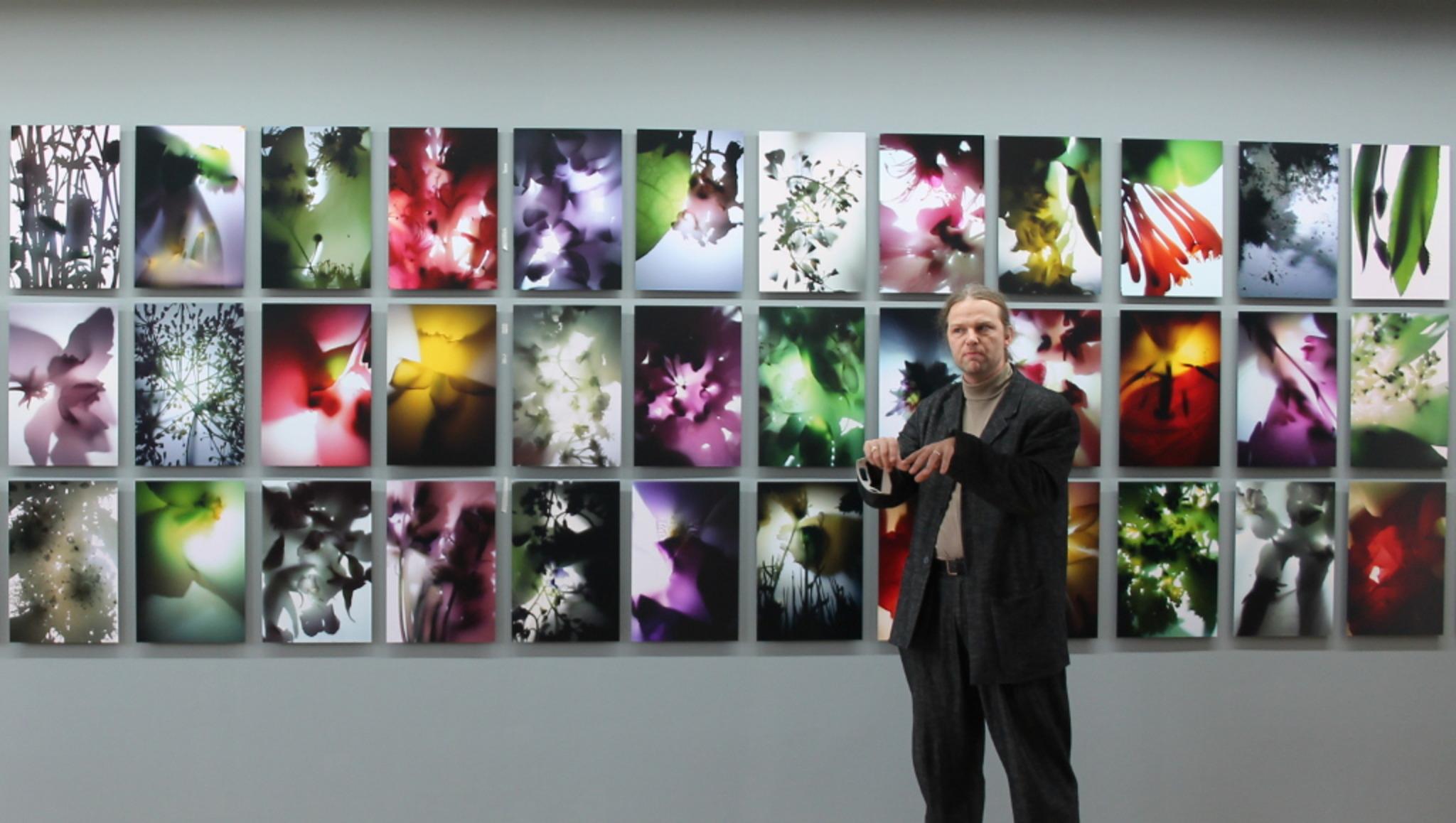 """Vergrößerte Detailaufnahmen von Bildern einheimischer Pflanzen, belichtet in vollkommener Dunkelheit – Tim Otto Roth vor der Reihe """"Flora domestica"""" in der Städtischen Galerie."""