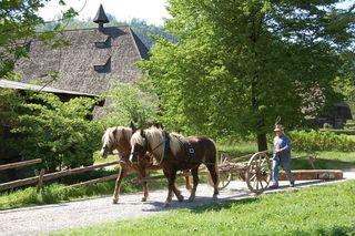 """Ganz im Zeichen des Jahresthemas """"Wald"""" steht der Eröffnungstag des Schwarzwälder Freilichtmuseums Vogtsbauernhof."""