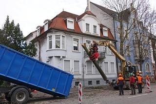 Baumfällungen entlang der künftigen Tramstrecke in der Großherzog-Friedrich-Straße