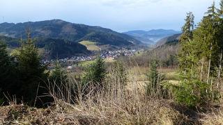 Bollenhuttrail in Gutach