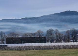 Die Schauenburg im Nebel