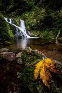 Allerheiligen Wasserfälle Oppenau