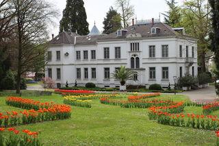 Im Stadtpark Lahr