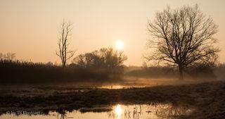 Vogelbaggersee in Nonnenweier