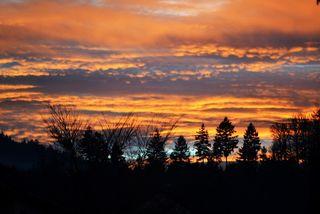 Sonnenuntergang über dem Ziegelwald bei Gengenbach