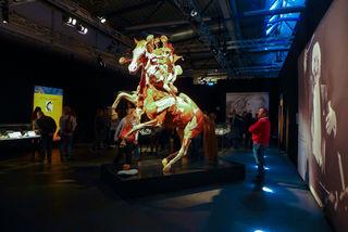 In der Ausstellung Körperwelten werden auch einige Plastinate von Tieren gezeigt.