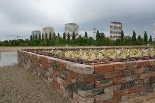 Vor der Hochhauskulisse ist am See bereits ein Hochbeet gemauert und bepflanzt.