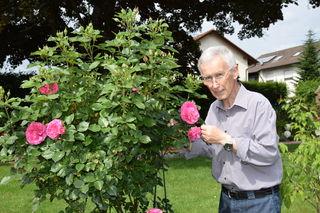 Der Steinacher Peter Schwörer ist stets auf der Suche nach einem Pollenspender für seine Rosen-Neuzüchtungen.