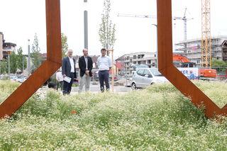 Im Grünen und doch in der Innenstadt: Oliver Martini (v. r.), Andreas Demny und Erwin Drixler auf der Baustelle Mühlbach-Areal