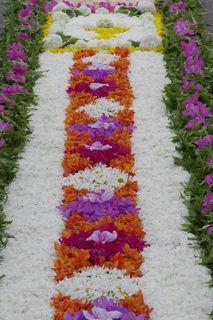 Einen besonders schönen Blumenteppiche gibt es an Fronleichnam in Mühlenbach.