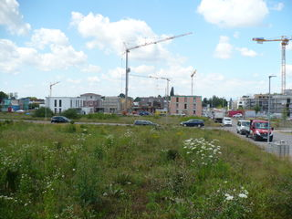 Im Baugebiet Seitenpfaden läuft die Aufsiedelung bereits.