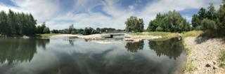 Neue Möglichkeiten etwa für Lachse und Meerforellen bieten sich bei der Elzmündung bei Ottenheim.