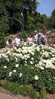 Freundeskreis des Rosengartens