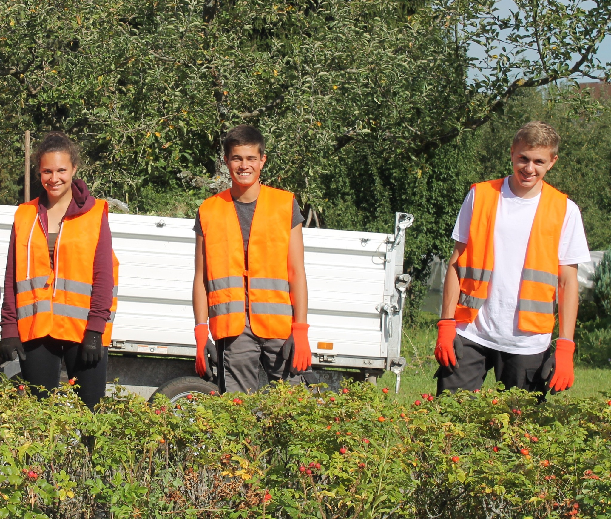 Lara Schubert, Kian Graefe, Steven Metzger jobben bei der Stadt Ettenheim.