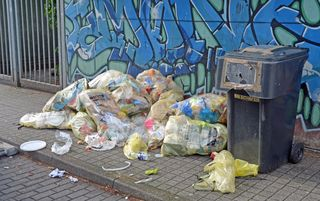 Befindet sich Essen in den gelben Säcken nimmt die Müllabfuhr sie nicht mit. Vor allen Dingen im Bereich des Marktplatzes gibt es dieses Problem. Hier muss dann der Kehler Betriebshof ausrücken.
