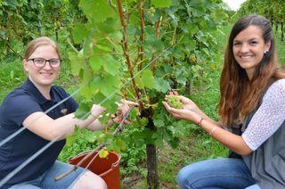 Die beiden Weinprinzessinnen Elisabeth Broß (Zell-Weierbach) und Carina Stulz (Gengenbach).