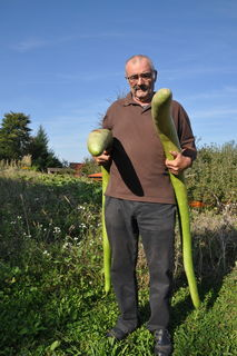 Manfred Kalt mit seiner Ernte