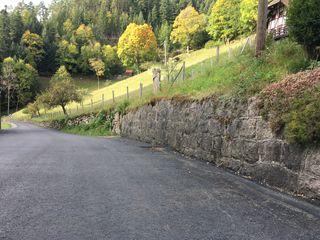 Die Straßenlage ist im Bereich Schwanenbach zwar gut, wenn es um Mobilfunk geht, ist man hier jedoch auf verlorenem Posten.