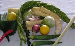 Schlangenbohnen, Mini-Auberginen und Zitronengras sind typische Zutaten der Thai-Küche.