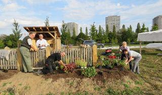 """Die Teilnehmer der """"Offenen Gartentür"""" beim Bepflanzen des Kleingartens, den sie zuvor umzäunt hatten."""
