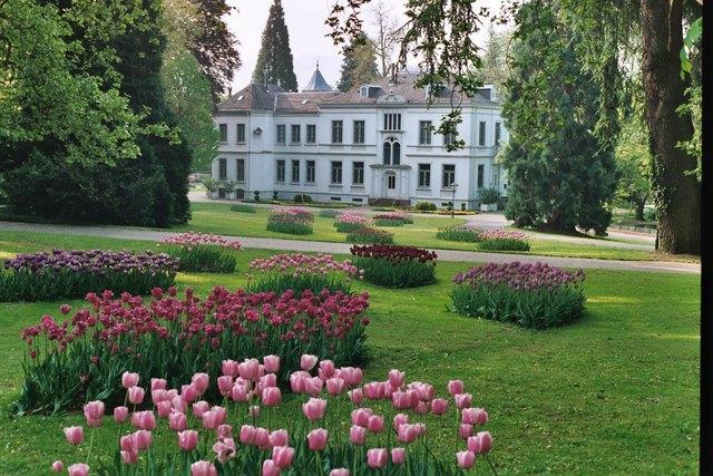 Tulpenblüte um die Villa Jamm