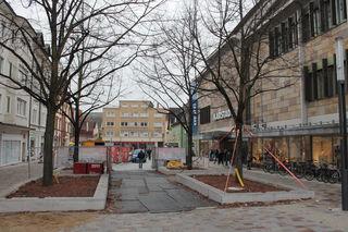 Die Linden werden gefällt und der Platz zum Advent so gut wie fertiggestellt.