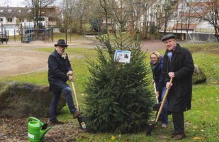(von links) Richard Sottru, Abteilungsleiter Öffentliches Grün und Umwelt, Urte Stahl, Abteilung Öffentliches Grün und Umwelt, und Oberbürgermeister Dr. Wolfgang G. Müller pflanzen den Baum des Jahres.