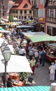 Viel los auf dem Haslacher Wochenmarkt