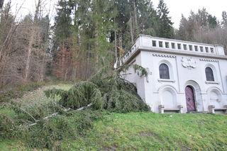 Quer über das historische Wasserreservoir beim Hausacher Kreuzberg stürzte ein Baum und brach am Geländer ab.