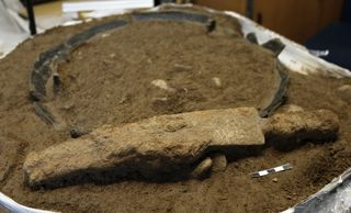 Dieses Schwert wurde in einem Gräberfeld bei Ausgrabungen in Rheinau-Diersheim gefunden.