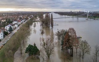 Das Wasser reicht bis an den Rheindamm