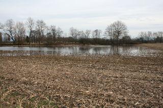 So manches Feld ähnelt zur Zeit einer Seenlandschaft.