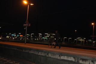Mit Spürhunden wurde der Bahnhof abgesucht.