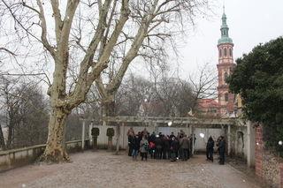 Stadt und Gutachter erläutern im Vinzentiusgarten die Situation um die Platanen und die Stadtmauer.