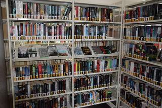 Eine große Auswahl bietet die Hausacher Mediathek.