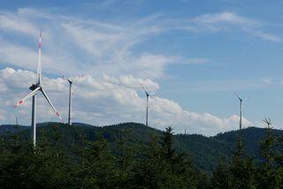 Windhöffigkeit spielt seit 2012 eine tragende Rolle.