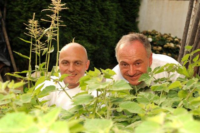 """Zweigespann im Hoterl """"Engel"""" in Sasbachwalden: Christian Mamber (links), von dem das Rezept stammt, und Herbert Decker"""