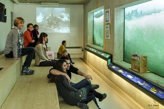 Das Besucherzentrum der Fischtreppe Gambsheim/Rheinau hat wieder geöffnet und bietet ein vielseitiges Programm im April.