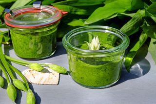 Mit Pesto aus frischem Bärlauch liegt man kulinarisch derzeit weit vorne.